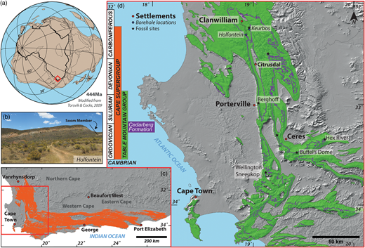 (a) Palaeogeographical reconstruction for c. 444 Ma, showing that the palaeolatitude of the southernmost portion of South Africa was 30 – 45°S. (b) In outcrop the Soom Shale Member is distinctive and typically occurs as a recessive marker (here at Holfontein). (c) The outcrop of the Cape Supergroup in South Africa. The red box shows limits of map in (d). (d) Outcrop of the Table Mountain Group, and Cedarberg Formation showing fossil-bearing localities.