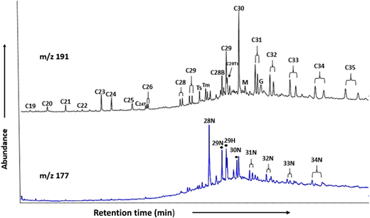 Ion chromatograms for m/z 191 and 177, showing identification of hopanes and norhopanes.