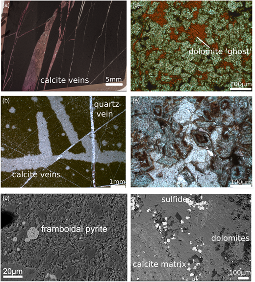 Petrographic features of cap dolostones. First row, thin-section scans (polarized light images), second row, thin-section microphotographs; third row, SEM images using a back-scatter electron detector (BSD). (a) Calcite bands in dolomite of Jiuqunao section. (b) Calcite veins cutting through organic carbon-rich dolomite at Jiuqunao section. The dolomite shows local dedolomitization into calcite (bright region). (c) Framboidal pyrite grain (15µm) in dolomite and silicate matrix at Jiulongwan section. (d) Dolomite rhombs in calcite matrix at Xiaofenghe section; dedolomitization leaves 'ghosts' of previous dolomite rhombs. (e) Fe-rich dolomite rhombs in Mg dolomite matrix at Longbizui; the centre of some dolomites show oxidation of Fe. (f) Subhedral sulphide grains in Huanglianba (slope) cap dolostone float in a calcitic matrix with few dolomite rhombs preserved.