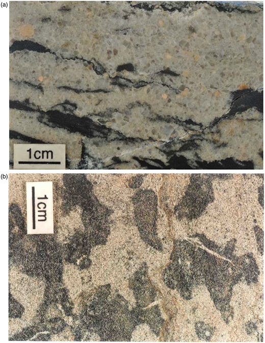 Cambro-Ordovician rocks rich in organic matter. (a) Eriboll Formation sandstone with abundant stylolites, Ullapool; (b) Durness Group (Sailmhor Formation) limestone with mottled dark zones rich in organic matter (Leopard Rock, formally Leopard Stone), Durness.