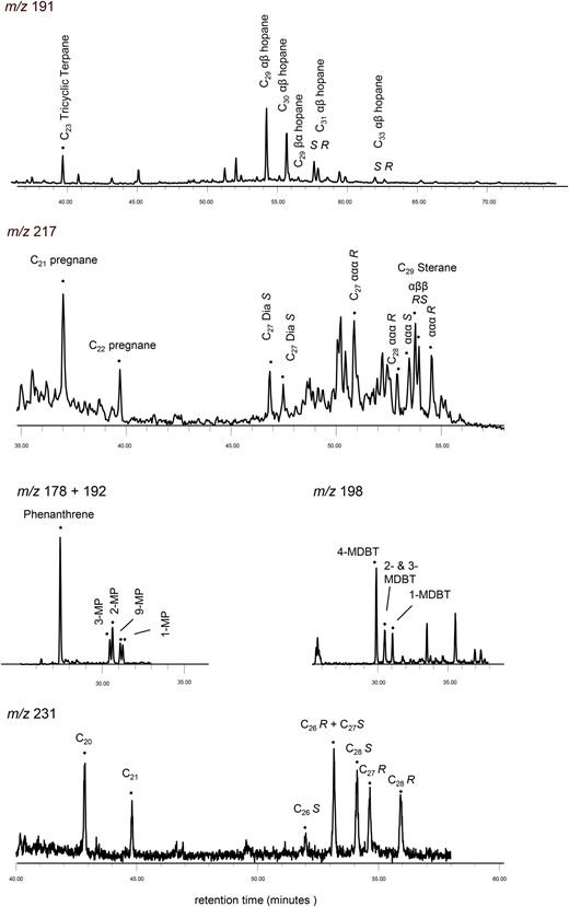 Ion chromatograms for Durness Group sample from Assynt. (a) m/z 191. C23 tricyclic terpane=C23 13β(H),14α(H) tricyclic terpane; C27 Ts=C27 18α(H)-22,29,30 trisnorneohopane; C27 Tm=17α(H)-22,29,30 trisnorhopane; C29αβ hopane=C29 17α(H),21β(H) hopane; C31αβ S=C31 17α(H),21β(H) (22S) hopane; C31αβ R=C31 17α(H),21β(H) (22R) hopane. (b) m/z 217. C21 pregnane=5α(H)- and 20-methyl-5α(H)-pregnane; C27 Dia S=C27 13β,17α(H) 20S diasterane; C27ααα R=C27 5α,14α,17α(H) 20R sterane; (c) m/z 178+192. 3-MP=3-methylphenanthrene; (d) m/z 198. 4-MDBT=4-methyldibenzothiophene; 1-MDBT=1-methyldibenzothiophene; (e) m/z 231. C20=C20 triaromatic steroid; C26S=C26 20S triaromatic steroid.