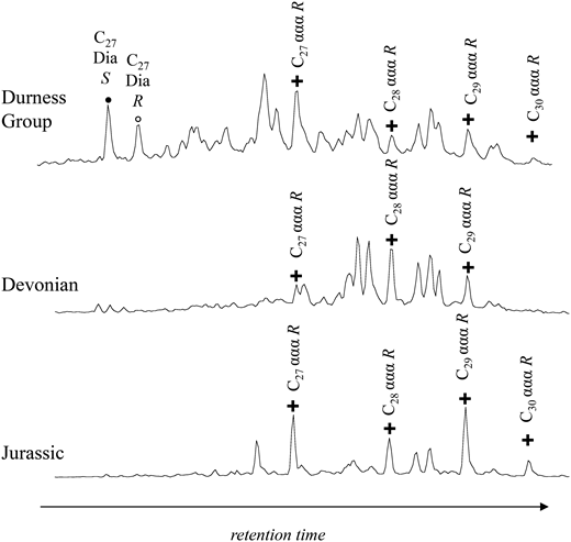 Comparison of Durness Group sterane composition (m/z 217 ion chromatograms) with samples of known source rock in northern Scotland of Devonian and Jurassic age. C27 Dia S=C27 13β,17α(H) 20S diasterane; C27ααα R=C27 5α,14α,17α(H) 20R sterane. The high abundance of diasteranes in Durness Group sample, and C28 steranes in the Devonian sample, should be noted. Durness Group composition does not match either of the younger source rocks.