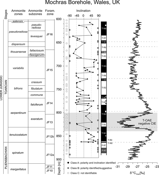 An integrated synthesis of the stratigraphy of the Toarcian succession in the Mochras Borehole, comprising (ammonite and foraminifer) bio-, carbon-isotope and magnetostratigraphy. The foraminiferal zones are taken from Copestake & Johnson (2014). The inclination values and the magnetostratigraphy column are plotted. The filled black circles represent Class A samples with identified inclinations that form the basis for the construction of the magnetic-polarity record. The dark grey squares represent Class B samples, for which only magnetic polarity was identified; the points at −90° indicate reversed polarity, and the points at 90° indicate normal polarity. The normal-polarity magnetozone is in black and the reversed-polarity magnetozone is in white. The grey zones in the magnetic record indicate magnetozones defined as normal-polarity, only based on (at least two) Class B normal-polarity samples.