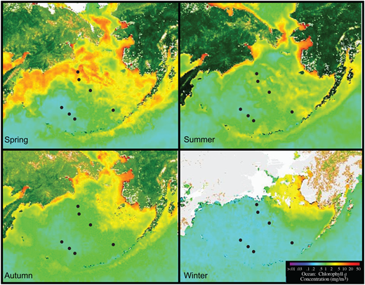 Seasonal estimates from the years 1998–2003 of oceanic chlorophyll-a concentration (mg m-3) from satellite imagery SeaWiFS (http://oceancolor.gsfc.nasa.gov/SeaWiFS). Also shown are the positions of the seven IODP Expedition 323 sites (see Fig. 1 for labels).