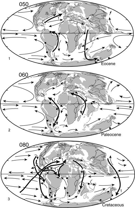 Paleobiogeography of southern hemisphere decapod crustacea journal figure2paleobiogeographic maps showing localities from which 1 eocene 2 paleocene fandeluxe Images