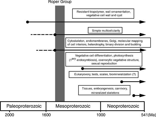 Biological innovations in early eukaryotes inferred from preserved microfossils