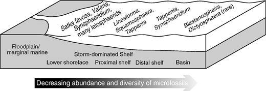 Paleoecological distribution of selected microfossils in the Roper Group.