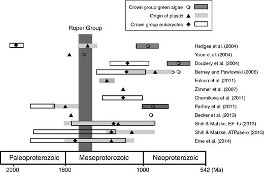 Comparison of Roper age with molecular clock estimates for the divergences of crown