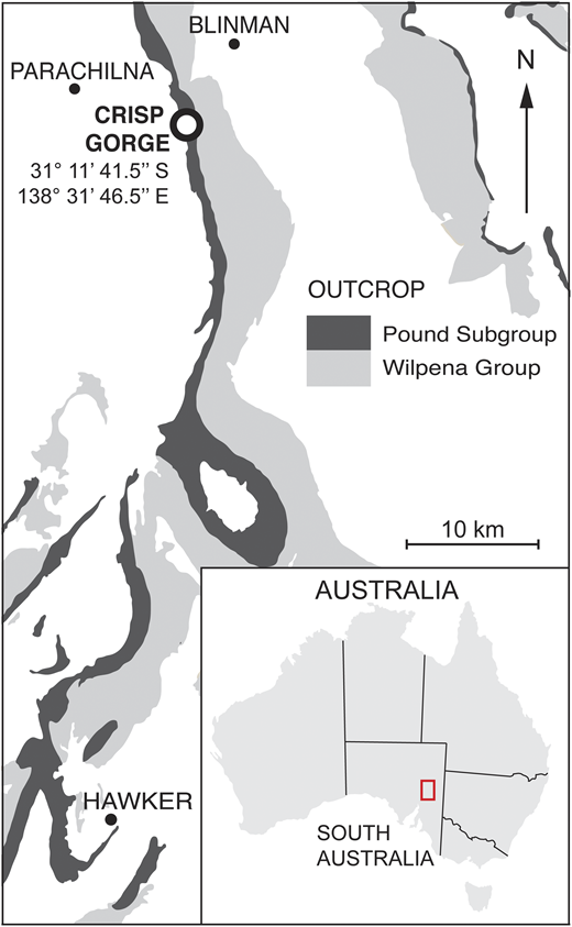 Locality map of the Flinders Ranges and Crisp Gorge fossil site. The Crisp Gorge fossil site is located within the Ediacara Member of the Pound Subgroup.