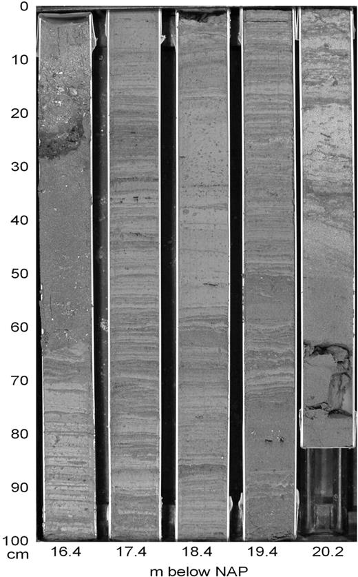 Development and preservation of a mid holocene tidal channel network vibracore showing channel fill facies note that the linsen bedded unit is overlain fandeluxe Images