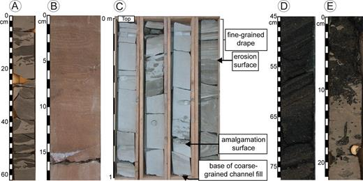Representative photographs of indicators of sediment bypass in core. A) Claystone and siltstone clasts in a fine-grained sandstone matrix from BAV1a research borehole cored behind the C/D ridge through sub-unit C2, Fort Brown Formation, Karoo Basin, South Africa, interval from 200.77 m (see Morris et al. 2014 for location). B) Thin coarse-grained lag draping an erosion surface, in turn overlain by fine silt and mud, Upper Puchkrichen Formation, Austria (adapted from Hubbard et al. 2009). C) Interpreted channel-fill succession with an erosion surface draped by fine-grained beds overlain by progressively thicker sandstones, Upper Puchkrichen Formation, Austria. D) Moderately sorted cross-bedded glauconitic medium sand with clay-rich interlamination deposited at the base of a clinothem. Heterolithic laminae suggest that the bedform migrated episodically, and is therefore indicative of sediment bypass. Note apparent steepening-upward trend in dip of cross beds as characteristic of the dune-scale bedform. From IODP Expedition 313, offshore New Jersey, core 313-M0028A-118R-1. E) Sharp erosional contact at 11 cm between dark brown sand (above) and pale brown silty clay (below). Coarse-sand infilled Thalassinoides burrows that subtend from the erosional surface into the underlying silty clay. This is interpreted as indicating open burrows in firmground with bypass-dominated flows depositing coarse-grained lags that infill the exhumed burrows. From IODP Expedition 313, offshore New Jersey, core 313-M0029A-208R-1.