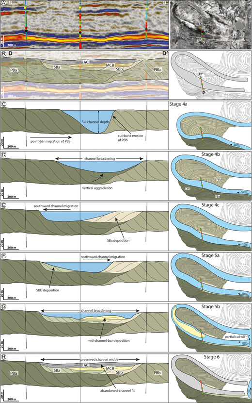 Meander-bend abandonment. A) Seismic cross section and planform image of the abandoned-channel fill and associated depositional elements. B) Interpretation of Part A highlighting the preserved stratigraphic architecture. C–H) Stages of abandonment in cross section and planform perspectives.