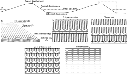Schematics of cross-stratified bedforms with varying degrees of preservation. A) Zones of topset, foreset, and bottomset development for dunes relative to the mean bed level, denoted with a black dashed line. B) Internal structure of a bedform, such as the simple dunes shown in Part A, containing bottomsets, foresets, and topsets. The top part of the foreset can be removed during topset formation; therefore, the upper part of the foreset often has a lower preservation potential than the topset itself. The four arrows denote possible preservation potentials shown in Parts C to F: C) preservation of entire deposit, D) preservation of most of the foreset and bottomset, E) preservation of a minor amount of the foreset and bottomset, F) preservation of the bottomset only.