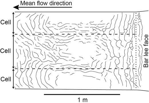 Trough downstream of an artificial unit bar; lines represent ripple crests (formed in a well sorted sand, d50 = 260 μm) developed over a 2400 s run in the UEA 10 m recirculating flume. Dashed lines denote the seams between flow (ripple fan) cells. The dotted line denotes the artificial unit-bar toe. See Appendix for further details of the experimental setup.