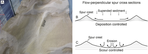 A) Dune-covered sand bed (well sorted sand, d50 = 703 μm) formed by water flowing towards the camera. Flume bed is 1 m wide; spur extends 0.6 m downstream of the dune. See Appendix for details of the experimental setup. B, C) Schematic cross sections of spurs cut perpendicular to the mean flow direction showing internal structure. B) Lamination formed by depositional growth of spur. C) Truncated lamination resulting from scour in the trough.