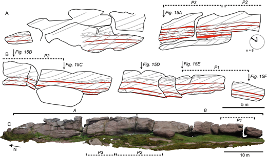 A, B) Schematics of sedimentary structures preserved within the exposure examined at the Roaches Grit. Bottomsets are highlighted in red. C) Photogrammetric model of exposure face denoting the locations of schematics A and B. Rose diagram denotes foreset dip direction in eight cross-stratified sets measured over the exposure.