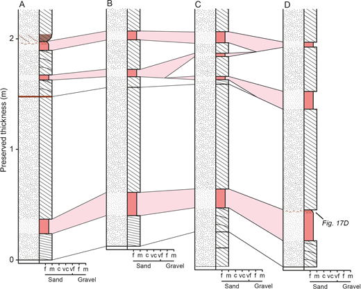 Measured sedimentary logs of the lower sets within the exposure examined at Site HS1 of the Hawkesbury Sandstone. Bottomsets are highlighted in light red. The position of each log is identified in Figure 17C. See Figure 15 for a key to the sedimentary structures.