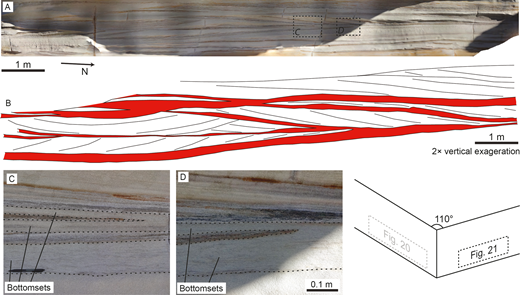 A) Photogrammetric model of the Hawkesbury Sandstone exposure examined at Cape Banks (Site HS3), across the migration direction of the formative bedforms. B) Schematic of the internal structure, with 2× vertical exaggeration. Bottomsets are highlighted in red. C, D) Photographs of the amalgamation of bottomsets where cross-stratified troughs wedge out. The locations of Parts C and D are noted in Part A. Black dashed lines in Parts C and D denote bottomset bounding surfaces. Pen is 0.14 m long.