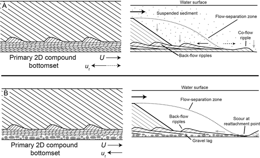 Schematics denoting the internal structure and formation of compound bottomsets induced by local spatial variability in conditions. U denotes mean flow, ut denotes local trough flow. Black arrows denote flow direction; black dashed arrows denote a previous flow direction. Gray arrows denote sediment transport.