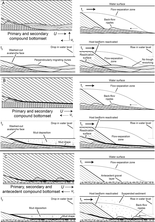 Schematics denoting the internal structure and formation (over time, t1 to t3) of compound bottomsets induced by temporal fluvial variability. U denotes mean flow, ut denotes local trough flow. Black arrows denote flow direction; black dashed arrows denote a previous flow direction. Where such arrows are oriented upwards, it denotes a flow direction into the page. Gray arrows denote sediment transport. Gray dashed arrows denote a change in water level.