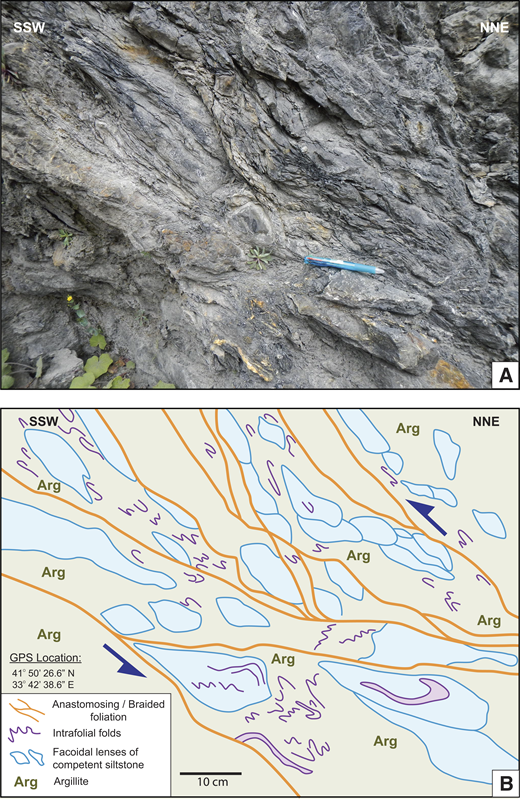A broken formation with elongated, facoidal siltstone and sandstone lenses in an intensely sheared argillite matrix, which displays anastomosing foliation, intrafolial folds, and floating fold noses that collectively indicate top-to-the-south-southwest contractional shearing. (A) Outcrop photo. (B) Interpreted image based on field observations and measurements. F—fault; GPS—global positioning system.