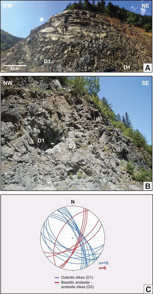 Tabular dike intrusions in the Küre sheeted dike complex. (A) Northwest-southeast–oriented doleritic dike swarms (D1 generation), which make up the majority of the dike complex. View is to the northwest. (B) Northwest-southeast–oriented sheeted dolerite dikes are crosscut by a northwest-southeast–striking andesitic dike (D2). View is to the northeast. (C) Lower hemisphere equal area stereonet plot of representative dike intrusions and generations in the sheeted dike complex.