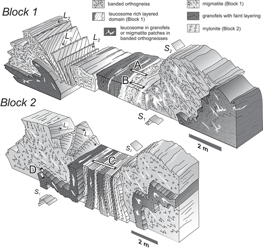Block diagrams showing the folded lithological contacts, deformation fabrics, and deformed leucosomes in two domains selected for sampling (see Fig. 5 for location). A, B, C and D indicate sampled slab sections presented in Figures 7A–7D, respectively.
