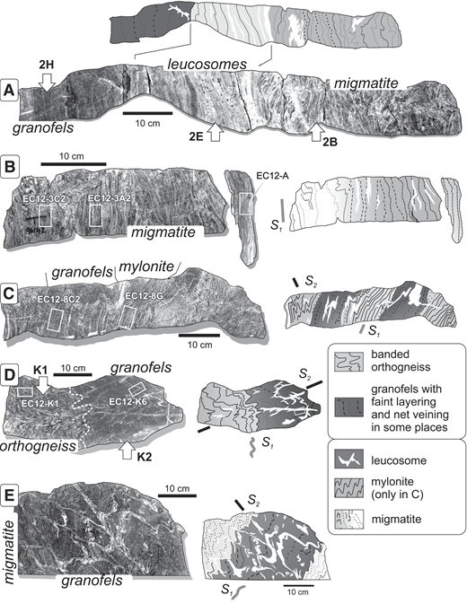 (A–E) Photographs of cut-out slabs and associated interpretative lithological maps with depicted S1 layering and leucosomes. Locations of thin sections are indicated by white rectangles. Numbered white arrows tagged with sample names indicate lithological types analyzed for bulk-rock chemistry and mass-balance calculations (Fig. 11; DR File; Fig. DR5). (For location of slab E, see the outcrop map in Fig. 5.)