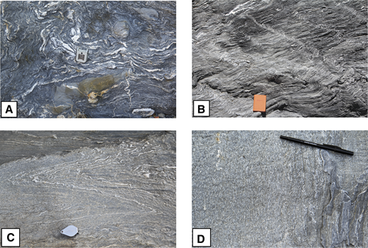 (A) Broken formation in South Fork Mountain Schist (SFMS), consisting of sandstone rafts in a pelitic matrix. The schist shows chaotic folding and strong disrupted quartz veins, due to its proximity to the Log Spring thrust (N39°52.240, W122°45.4519). (B) Trains of asymmetric D3 crenulations which verge to the NW form kink bands which dip to the SE. This is representative of the NW-vergent, flat limb geometry which dominates the SFMS at a variety of scales. View looking NE (N39°51.758, W122°43.549). (C) D2 fold pair in massive greywacke, delineated by thin quartz veins parallel to S1 (N39°52.309, W122°44.878). (D) Stretching lineation defined by deformed clastic quartz grains on an S2 surface in massive metagraywacke (N39°52.372, W122°44.621).