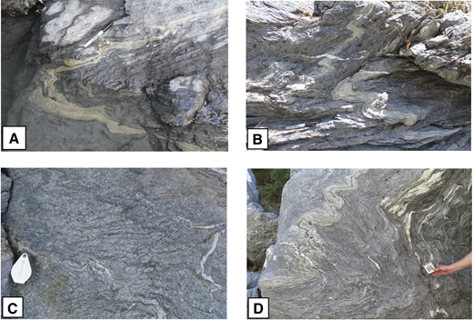 (A) Meter-scale D3 fold in South Fork Mountain Schist (SFMS) with opposite vergences of minor folds on opposite limbs. Looking SW (N39°52.227, W122°45.186). (B) Gently dipping axial planes are commonly associated with D3 folds in steep limbs of major D3 folds. Opposite limbs contain smaller folds with opposite vergences, SFMS (N39°52.239, W122°45.050). (C) Differentiated crenulation cleavage S3 fans out around a minor D3 fold in SFMS (N39°52.309, W122°44.878). (D) Near the western limit of the SFMS, two phases of folding are present. The dominant phase is an E-dipping, E-vergent to symmetrical D3 set at scales of cm to m. Small cm-scale W-vergent folds are present as well; they appear to be older and only locally developed (N39°52.226, W122°45.335). Viewed looking S.