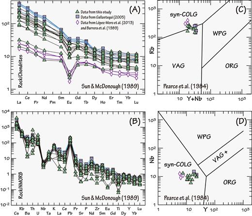 (A) Chondrite normalized rare earth element plot for the early Carboniferous suite (ECS) granitoids (normalization values of Sun and McDonough, 1989). (B) Normal mid-oceanic ridge basalt (N-MORB) normalized trace element plot for the ECS granitoids (normalization values of Sun and McDonough, 1989). (C) Rb versus Y + Nb tectonic discrimination diagram (Pearce et al., 1984). COLG—collision granites; VAG—volcanic arc granites; WPG—within plate granites; ORG—ocean ridge granites. (D) Y versus Nb tectonic discrimination diagram (Pearce et al., 1984).