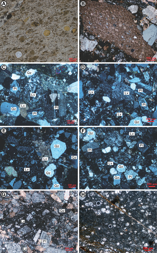 Petrofacies of the Luogangcuo Formation: (A) Radiolarian chert. (B) Impure bioclastic-limestone clasts in conglomerates (samples 12QD02 and 12LGC12). (C–F) Quartzo-feldspatho-lithic volcaniclastic sandstones (12LGC05, 12QD04, 12QD17, and 12QD20). (G–H) Slumped blocks of feldspatho-lithic volcaniclastic sandstone and radiolarian chert (12LGC15 and 12LGC19). Qz—quartz; Pl—plagioclase; Lv—volcanic lithic; Lc—carbonate lithic.