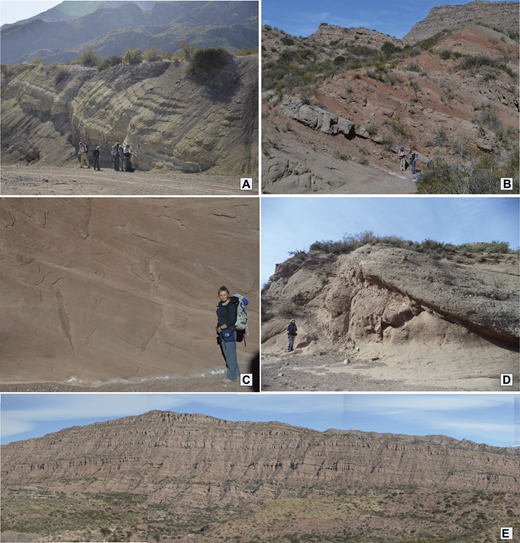 Field photographs of the diagnostic facies of the Divisadero Largo and Mariño Formation facies associations (FA). (A) Divisadero Formation characterized by distinct purple-brown siltstone to sandstone with minor pebble conglomerate, interbedded with green siltstone and fine sandstone. (B) The Mariño FA2 facies is characterized by cycles of red clay and thin-bedded sandstone intercalated with calcrete paleosol horizons. (C) FA3, characteristic of the lower-mid-Mariño facies, is characterized by the thick cross-bedded eolian facies. (D) Contact between the top of the eolian FA3 and the bottom of FA4, characterized by an erosive contact between pebble-cobble channelized bed over dunes and interdunes deposits. (E) The cliff forming Mariño FA4, consisting of repeating coarsening-upward cycles of red silty clay, sandstone, and amalgamated conglomerate channels.