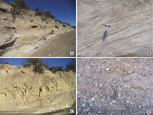Field images of the Tobas La Angostura, Rio de los Pozos, and Mogotes Formations. (A) General view of Tobas La Angostura Formation. (B) Detail from the distinctly tuffaceous facies association (FA7), which ranges from coarse crystalline tuff to volcanic lithic arenite with tuffaceous intraclasts. (C) Rio de los Pozos FA8, distinguished by bright yellow tuffaceous beds. (D) Detail of Mogotes Formation, characterized by poorly consolidated boulder-cobble conglomerate.