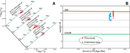 Zircon U-Pb and Hf isotopic results. (A) Zircon laser-ablation–inductively coupled plasma–mass spectrometry (LA-ICP-MS) U-Pb concordia ages. (B) Zircon epsilon Hf values vs. U-Pb crystallization ages. The published zircon Hf isotope data are from Meng et al. (2016). MSWD—mean square of weighted deviates; DM—depleted mantle; CHUR—chondritic uniform reservoir.