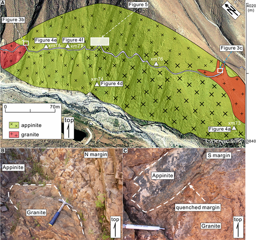 Field photos showing contact relationships. (A) The cumulate appinite pluton. (B–C) Relationships between the appinite and younger granite.
