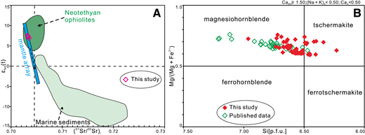 Bulk-rock Sr-Nd isotopic results and hornblende classification. (A) Whole-rock Sr-Nd isotopes for the studied appinite, where data for the Neotethyan ophiolites are from Xu and Castillo (2004) and Zhang et al. (2005). (B) Classification of hornblendes according to the nomenclature of Leake et al. (1997). The published hornblende compositions are from Meng et al. (2016).