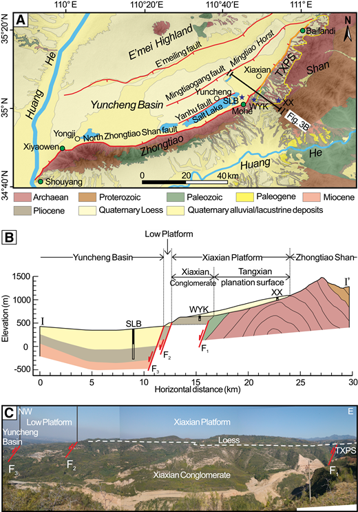(A) Simplified geological map of the Yuncheng Basin and Zhongtiao Shan (ZTS, Shan means mountains in Chinese) digitized from 1:200,000 Chinese geologic maps (Ministry of Geology and Mineral Resources), with geomorphic units and main faults (Li et al., 1998; Wang et al., 2002). The yellow frame and five-pointed stars are positions of the Tangxian planation surface (TXPS) and magnetostratigraphic sections, respectively. WYK—Wangyukou; XX—Xiaxian (Xiong et al., 2017); SLB—Salt Lake borehole (Wang et al., 2002). (B) Geological cross section of the ZTS–Yuncheng Basin digitized from geologic maps. The Xiaxian Platform is composed of the Tangxian planation surface, Xiaxian Conglomerate, and overlying loess. The thickness of Pliocene and Quaternary strata in the Yuncheng Basin is constrained by the SLB and Mingtiaogang borehole sections (Wang et al., 2002). The thickness of Pliocene strata of the Low Platform is consistent with that of the Salt Lake borehole. The thickness of other strata in late Cenozoic is measured by this work, the thickness of Miocene strata is unknown, and the dotted line indicates the unknown boundary. (C) View of the TXPS, Xiaxian Platform, Low Platform, and Yuncheng Basin on the WYK section, bounded by F1, F2, and F3, three branches of the north ZTS fault, respectively.