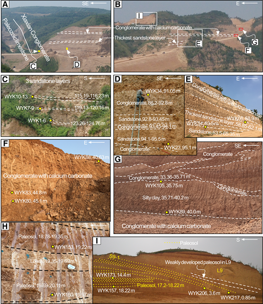Representative (sampling) photos of the Wangyukou (WYK) section. (A and B) The complete exposures of the section and positions of the segments. (C and D) Conglomerate and sandstone strata in the bottom. (E and F) Conglomerate layer with calcium carbonates and the thickest sandstone layer are two marker layers. (G) Secondary loess interbedded with gravel layer. (H and I) Overlying loess-paleosol sequence with L9, one of the most important marker layers of the loess in North China.