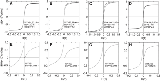 (A–D) Hysteresis loops after slope correction for paramagnetic contribution. (E–H) Isothermal remanent magnetization (IRM) acquisition and back-field demagnetization curves. Samples WYK61 and WYK109 represent the sandstone layers, sample WYK93 represents the silty clay layer of the Xiaxian Conglomerate, and sample WYK198 represents the loess layer above the Xiaxian Conglomerate. M—magnetization; Bc—coercivity; Bcr—coercivity of remanence; H—applied field; WYK—Wangyukou.
