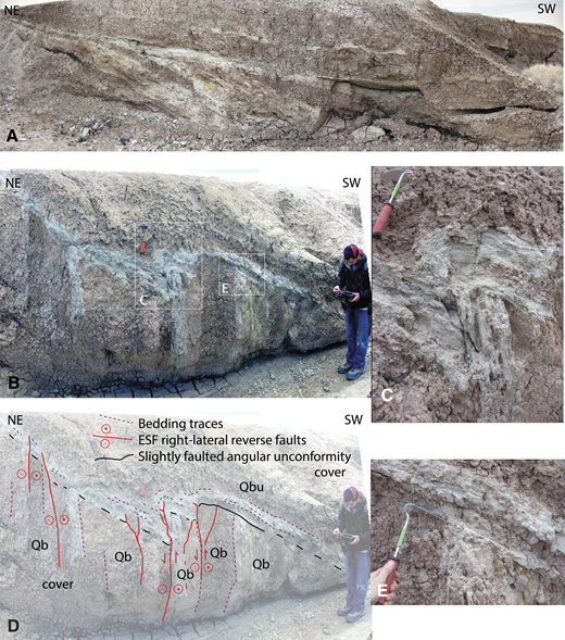 Annotated photographs of growth strata that preserve a faulted angular unconformity between the Upper Brawley Formation and Lower Brawley Formation. View is to the southeast. The upper scene (A) is 10s of meters basinward of the lowermost scenes (B to E). Notice that the faults in B and C are parallel to the steep Pleistocene beds and have flat-on-flat geometries below the unconformity. Mudstone is dark, and local-sourced fine sand and silt beds are white. The expanded views shown in C and E are marked with white boxes in B. See Figure 2 for the location near Bombay Beach, California. Qb—Lower Brawley Formation; Qbu—Upper Brawley Formation.