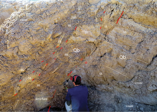 Annotated photograph of a right-lateral fault in the ESF of the Durmid ladder structure. View is to the northwest. There is a ramp in its footwall (right) and a disrupted flat in its hanging wall (left). The longest sequence of red arrowheads point to the main slip surface and fault core. Shorter red arrowheads point out a fraction of the faults in the damage zone. Note that the damage is localized in the mud-rich beds of the hanging wall of the fault. Mudstone (m) is redder and darker than the sandstone beds (ss) of the Brawley Formation (Qb).