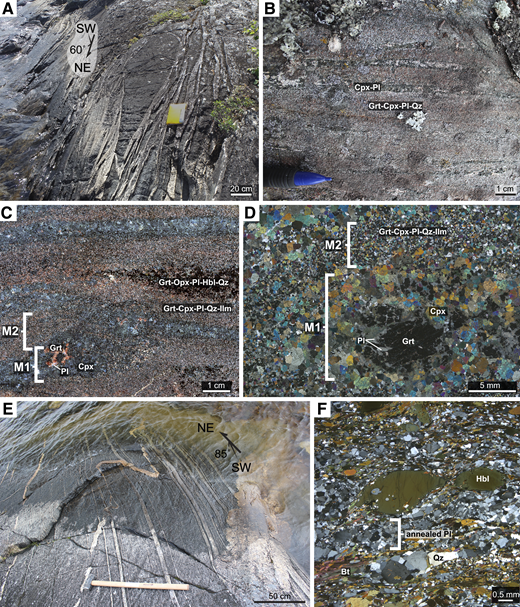 (A) Northeast-trending amphibolite pods and tonalitic veins of ST1 with late east-west–oriented fracturing. (B) (Grt + Cpx)–bearing mafic gneiss of ST1. (C) Lenses of Grt + Opx + Pl + Hbl + Qz and Grt1 + Cpx + Pl + Qz (M1) enveloped by a fine-grained Grt2 + Cpx + Pl + Qz + Ilm (M2) assemblage. (D) Cross-polarized photomicrograph of the texturally distinct M1 Grt1 + Cpx + Pl + Qz assemblage and M2 Grt2 + Cpx + Pl + Qz + Ilm assemblage in sample 15ET249. (E) Highly sheared mylonites of ST2 dipping steeply to the southeast with a shallowly southwest-plunging lineation. (F) Photomicrograph of ST2 tonalite mylonite showing granoblastic textures in plagioclase consistent with late thermal annealing. Mineral abbreviations are according to Whitney and Evans (2010).