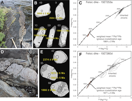 (A) Outcrop relationship of felsic dike (sample 15ET253a) that crosscuts ST2 mylonites (1 m hammer for scale). (B) Representative backscattered electron (BSE) images of 2.6 Ga inherited and 1.86 Ga igneous zircon crystals (large spots are 20 µm; small spots are 10 µm). (C) Concordia plot showing the 2.6 Ga inherited population (dashed ellipses), which is representative of host-rock ages, and the 1.86 Ga population, which is interpreted to represent the igneous crystallization age of the dike. (D) Outcrop relationship of felsic dike (sample 15ET260d) that crosscuts ST2 mylonites at a low angle (15 cm pencil pointing north/left for scale). (E) BSE images of representative zircon crystals with large black circles representing 20 µm diameter spots for scale. (F) Concordia plot showing the 1.87 Ga igneous population and older inherited analyses (dashed ellipses).