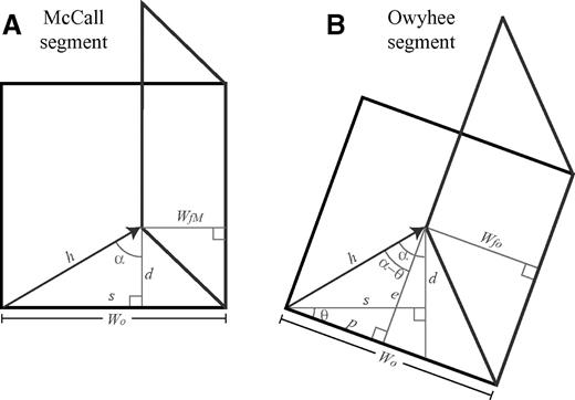Map view of geometry of the oblique convergence in the western Idaho shear zone. (A) For the McCall segment, α correlates directly to the amount of shortening and wrenching of the western Idaho shear zone. (B) In the Owyhee segment, the convergent component is WfO – Wo and the transcurrent component (e) is e = (Wo – WfO)/tan(α–θ). The variables are α = McCall oblique-convergence angle; WfO = final width of the Owyhee segment = 31 km; Wo = original width of the shear zone; θ = angle between the orientation of the McCall segment and the orientation of the Owyhee segment, 20°, and α – θ = the Owyhee oblique-convergence angle.
