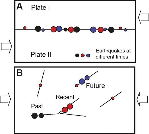 Cartoon showing the difference between earthquakes (A) at plate boundary faults and (B) in midcontinents. The plate boundary fault is loaded at a constant rate by the steady relative plate motion, causing quasi-periodic earthquakes to concentrate along the plate boundary. The midcontinent is loaded from the far field, and the loading is shared by a complex system of interacting faults. Hence, on each fault, the loading rate may be variable, and earthquakes may shut off on one fault and migrate to another.