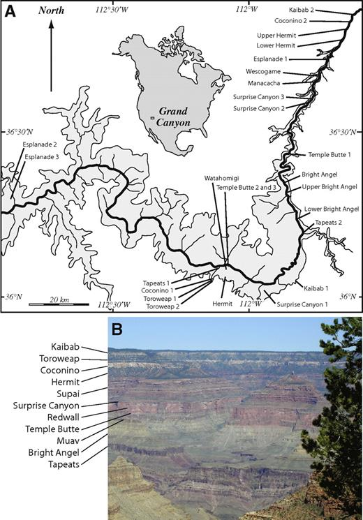 (A) Location of samples in the Grand Canyon (shaded area). (B) Exposure of ∼1310 m of Paleozoic strata along the north rim of the central Grand Canyon, with formation names indicated.