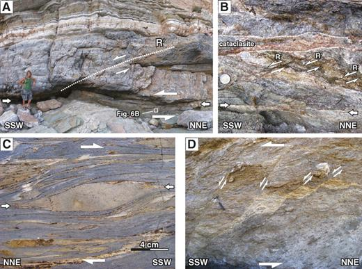 (A–B) Several-tens-of-meters-long, horizontal, brittle-ductile shear zones in SW Sifnos (4086783N, 295786E). These shear zones record only a few meters offset within the Cycladic Blueschist unit and have a clear top-to-the-SSW shear sense with evidences of ductile fault drag, dissolution/precipitation creep, and cataclastic deformation. R′ indicates synthetic Riedel faults (∼200°/25°). (C) Marble mylonites within the Upper Marble of the Lower Tectonic unit (equivalent of the Basal unit), with a strong NNE-SSW–striking stretching lineation and top-to-the-SSW shear sense north of Lavrion (Theater Thorikos, 4181758N, 240418E), separated by a zone of cataclastic deformation the Upper Tectonic unit (equivalent of the Cycladic Blueschist unit) form the hanging wall. (D) Multiple generations of foliated and unfoliated cataclasites from a low-angle normal fault contact between the Upper and the Lower Tectonic units with SSW-dipping synthetic high-angle brittle faults (Attica, 4186230N, 241254E).
