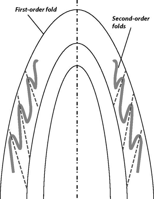 Relationship between trends of minor parasitic fold axes and the main fold axis. Note that the orientation of minor folds could vary as much as 90°. Thus, using fold trends for inferring regional shortening directions without a structural context can be misleading.