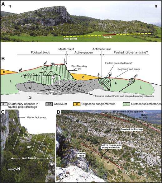 (A) Photograph of graben I (Fig. 6) at the head of the lateral spread showing the trace of trench 1 and profile ERT-1 (ERT—electric resistivity tomography), sited across the projection of an antithetic fault scarp in a depression related to a paleodrainage. See location in Figure 6. The colluvium at the foot of the scarp on the left (Roca de Perauba), 62 m high, is affected by multiple antislope scarps with open fissures. (B) Sketch showing the morphostructural features of the graben. (C) Open fissures in colluvium at the foot of the master synthetic fault scarp. Circled person for scale. (D) Image of the antithetic faults scarps. The antislope scarp in the central portion of the image shows a compound beveled geometry. The scarp in the foreground shows two en echelon fault segments with a relay ramp in the stepover.